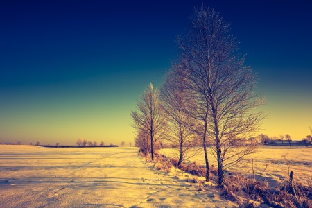 vintage landscape: Vintage landscape of winter field in Poland. Beautiful retro landscape.