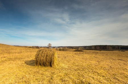 hay bales: Early spring meadow landscape in Poland. Beautiful polish landscape with hay bales Stock Photo