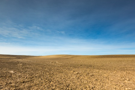 agri: Early springtime plowed field landscape. Polish field at sunny spring day under blue sky