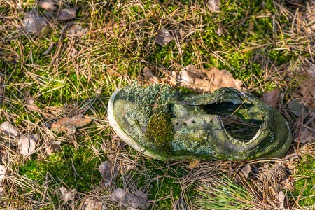 not a problem: Rotten shoe lying on illegal garbage in spring forest. Ecologic problem in not developed countries.