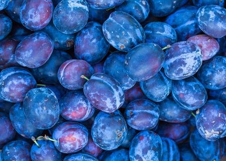 Prugne sfondo Belle prugne blu in primo piano - sfondo di frutta fresca.