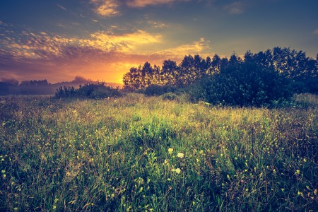 Vintage photo of vibrant landscape with foggy meadow in Poland. Countryside with wild foggy meadow. Stock Photo