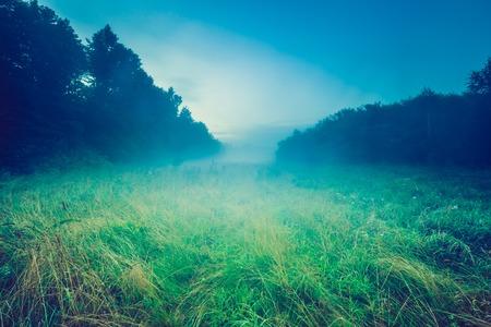 Vintage photo of wild foggy meadow landscape. Summer grassland under sunset or sunrise sky and fog. Misty landscape.