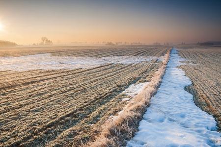 フィールドの美しい冬の景色。 写真素材