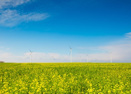Windmills on green field under blue sky. Autumnal or spring landscape. Stock Photo