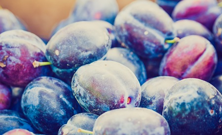 lomography: Vintage photo of fresh plums lying in container. Fresh fruits background.