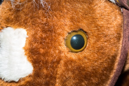 plushie: Close up of toy eye. Piece of cuddly toy face in big close up. Stock Photo