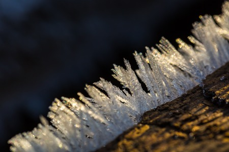 christmas grounds: Close up of ice crystals. Big close up of snow or ice crystals. Natural background