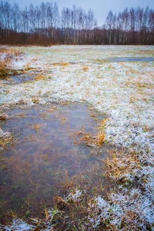 Winter meadow with frozen water. Bad weather winter landscape taken in Poland.