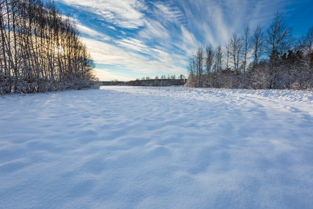 Beautiful winter field, road and trees landscape. Snow covered polish landscape. Stock Photo