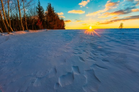 Winter fields sunset with snow moving by wind. Colorful landscape of sunset in winter.