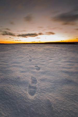 Beautiful winter after sunset landscape of field with footprints. Long expoure of european fields in winter. Colorful landscape