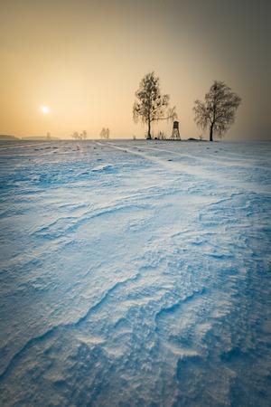 snowy field: Winter snowy fields and foggy day. Beautiful european winter landscape with raised hide.