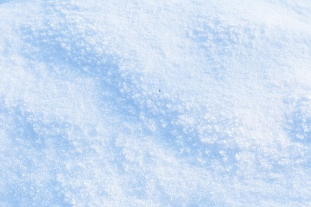 ligh: Snow background in close up. Surface of fresh winter snow in sunset ligh.