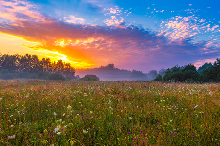 Vibrant summer sunrise over foggy, magical meadow. Polish countryside landscape. Stock Photo