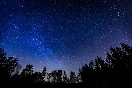 Night sky over rural landscape. Beautiful night starry sky, high ISO landscape.