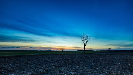 Early spring fields at sunset. Natural landscape of polish countryside.