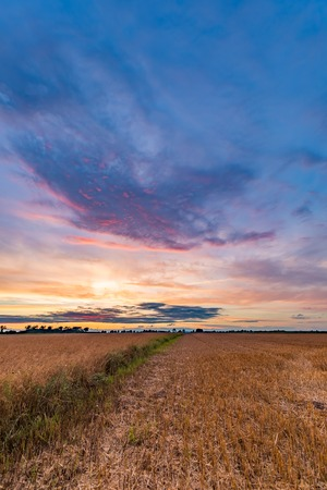 Spectacular sunset over stubble field. Polish countryside after harvest.