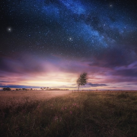 Beautiful landscape with field under sky with starrs. Polish landscape. 스톡 콘텐츠