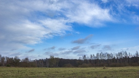 Meadow landscape under blue sky with clouds. Polish countryside.