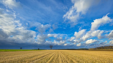 Stubble field landscape under cloudy sky. Beautiful polish landscape. Zdjęcie Seryjne