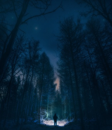 Surreal night forest landscape with alone strange man with flashlight. Horror scene. Zdjęcie Seryjne