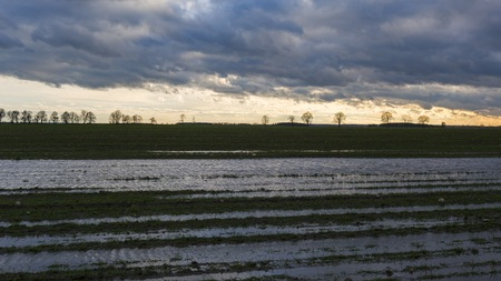 Flooded field under dark cloudy skies. Polish countryside landscape. Zdjęcie Seryjne