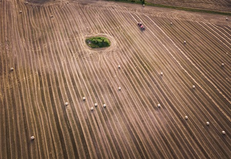 AERIAL,Tractor with press working on stubble field at summer afternoon. Drone photography