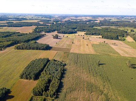 Beautiful summer fields and forest photographed from drone. Polish aerial landscape.