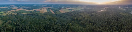Aerial: Summer sunset over foggy forest. Beautiful drone landscape.