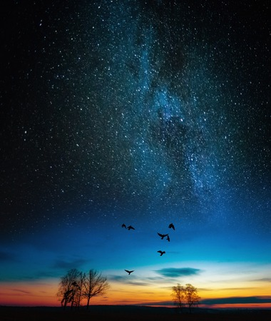 Dreamy surreal landscape with starry night sky and dawn. Crows flying under stars.