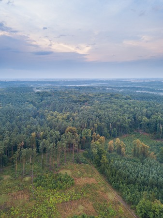 Beautiful foggy polish landscape photographed from drone. Drone view landscape