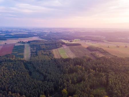 Aerial: FIelds in sunset light. Drone view Zdjęcie Seryjne