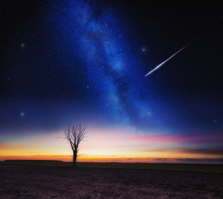 Beautiful dreamy night landscape with milky way on sky and fields.