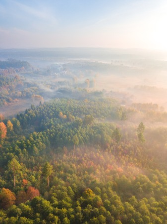 Aerial landscape with foggy sunrise over meadows and forest. Polish landscape. Zdjęcie Seryjne