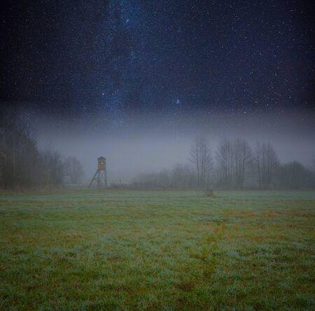 Spooky night landscape with meadow under starry sky. Horror scene.