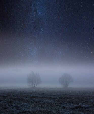 Night spooky landscape with foggy fields under starry sky.
