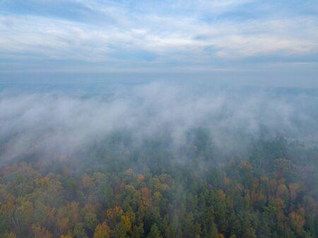 Beautiful Misty forest landscape photographed from drone. Zdjęcie Seryjne
