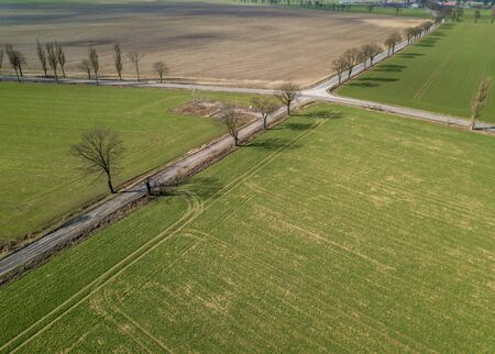 Beautiful green spring fields from above. Drone landscape