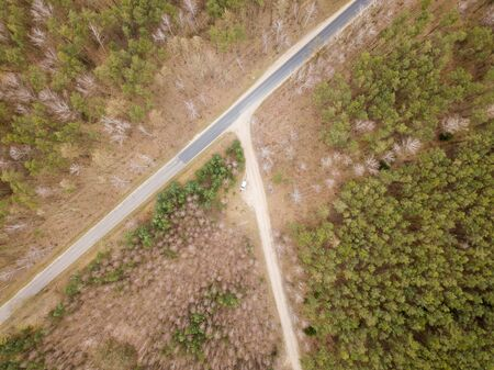 Top down drone landscape with forest in early spring. Poland from above.