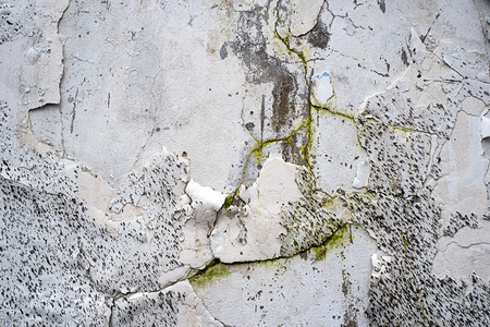 bad color: Peeling Paint Wall with Mud and Moss