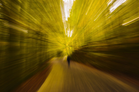 time travel: Abstract Blurry Yellow Fall Forest - Look Like Time Travel or Teleportation