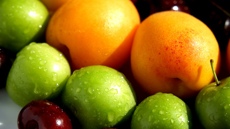Wet plums and apricots from high angle view