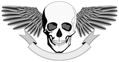 Winged Human Skull logo Stock Vector - 7548714