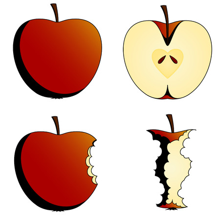 four states of apples Vector