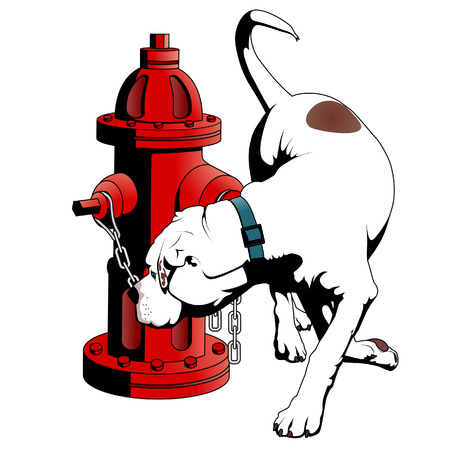 borne fontaine: American Bulldog at the fire hydrant Illustration