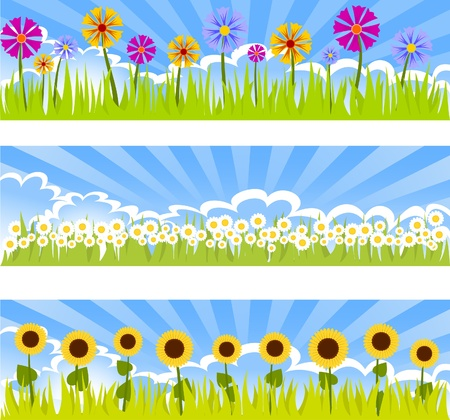 sunflower field: three floral banners Illustration