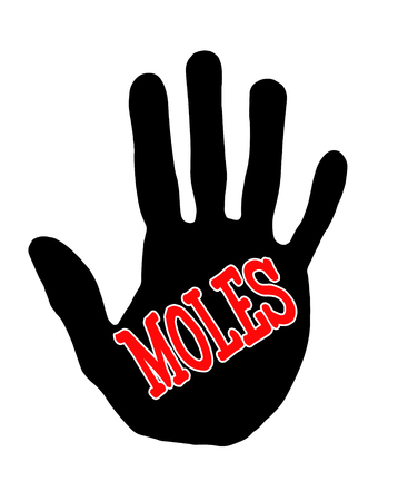 hillock: Man handprint isolated on white background showing stop moles Stock Photo