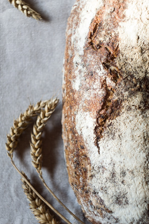 Beautiful freshly baked rustic bread and ears of wheat on gray towel