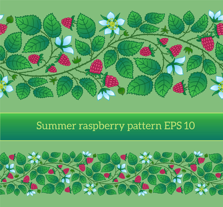 Summer seamless border template with raspberry, leaves and flowers. Can be used for backgrounds, packaging, invitations, cards, wrapping paper. Illustration